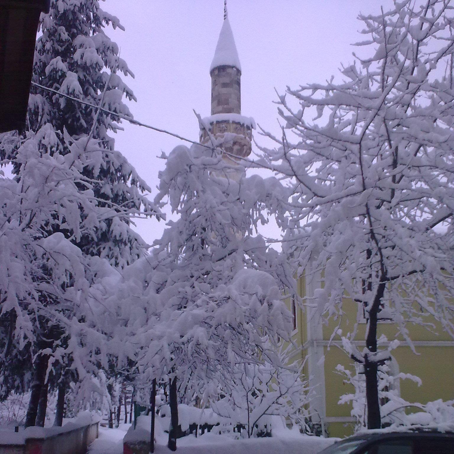 kumru_manzara_yeniler